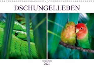 Dschungelleben - Tierportraits