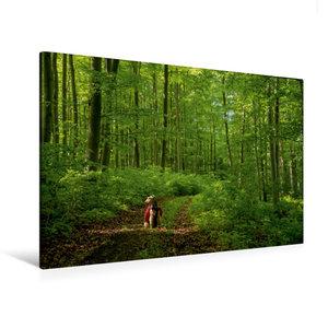Premium Textil-Leinwand 120 cm x 80 cm quer Das Grüne Band ganz