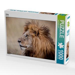 Löwe 1000 Teile Puzzle quer