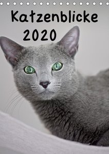 Katzenblicke 2020