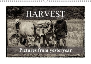 Harvest, pictures from yesteryear (Wall Calendar 2015 DIN A3 Lan