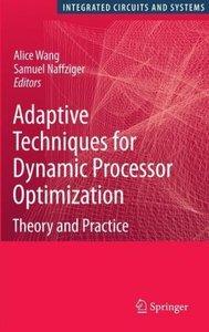 Adaptive Techniques for Dynamic Processor Optimization