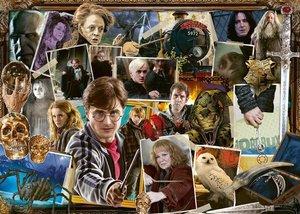 Harry Potter gegen Voldemort
