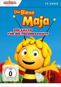 Die Biene Maja (CGI). Tl.15, 1 DVD