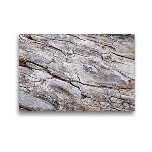 Premium Textil-Leinwand 45 cm x 30 cm quer Uriges Treibholz
