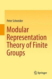 Modular Representation Theory of Finite Groups