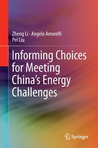 Informing Choices for Meeting China's Energy Challenges