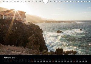 Teneriffa - Insel des ewigen Frühlings (Wandkalender 2019 DIN A4
