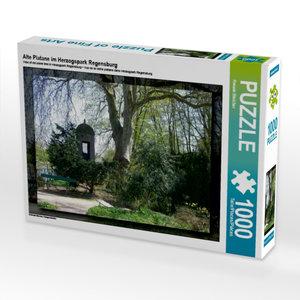 Alte Platane im Herzogspark Regensburg 1000 Teile Puzzle quer