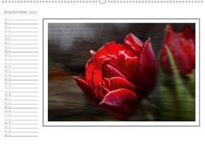 Blütenpracht, nicht nur ein Geburtstagskalender