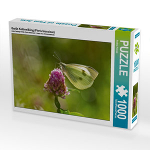 Große Kohlweißling (Pieris brassicae) 1000 Teile Puzzle quer