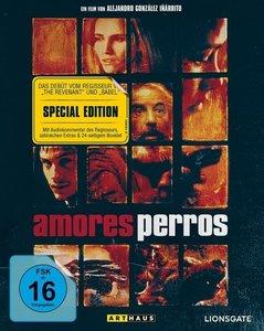 Amores Perros. Special Edition