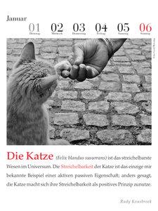 Der literarische Katzenkalender 2019