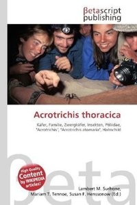 Acrotrichis thoracica