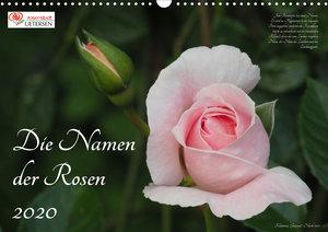 Die Namen der Rosen