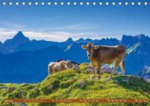 Allgäuer Schönheiten Allgäu - Land der Kühe