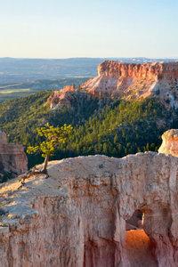 Premium Textil-Leinwand 80 cm x 120 cm hoch Bryce Canyon Nation