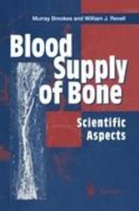 Blood Supply of Bone