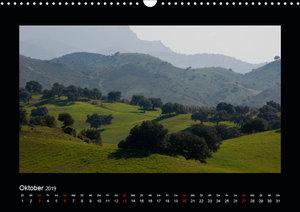 Landschaften Andalusiens (Wandkalender 2019 DIN A3 quer)
