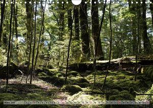 Kia ora, Aotearoa - Wunderbares Neuseeland (Wandkalender 2019 DI