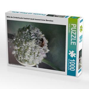 CALVENDO Puzzle Blüte des Zwiebellauchs fasziniert durch tausend