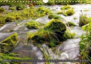 naturnah (Wandkalender 2019 DIN A4 quer)