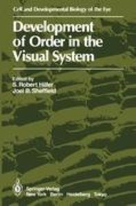 Development of Order in the Visual System