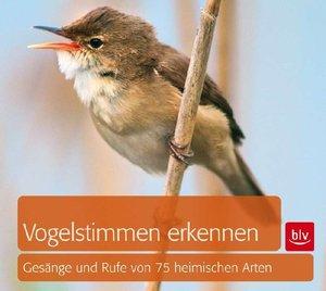 Vogelstimmen erkennen / CD