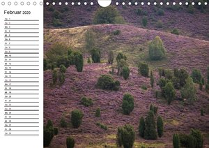 Lüneburger Heide (Wandkalender 2020 DIN A4 quer)
