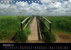 Amrum, Perle der Nordsee (Tischkalender 2019 DIN A5 quer)