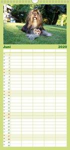Land und Liebe - Familienplaner hoch (Wandkalender 2020 , 21 cm