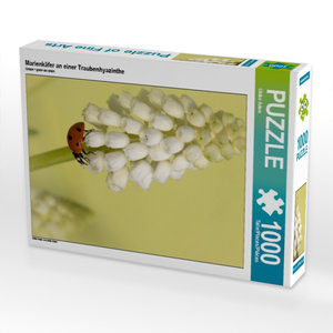 Marienkäfer an einer Traubenhyazinthe 1000 Teile Puzzle hoch