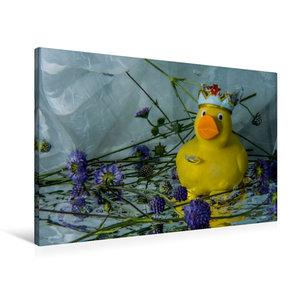 Premium Textil-Leinwand 90 cm x 60 cm quer Enten-King