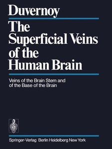 The Superficial Veins of the Human Brain