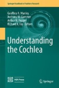 Understanding the Cochlea
