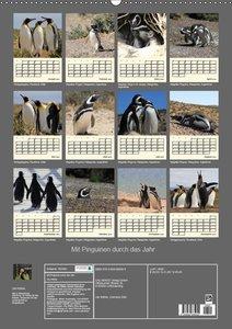 Mit Pinguinen durch das Jahr (Wandkalender 2019 DIN A2 hoch)