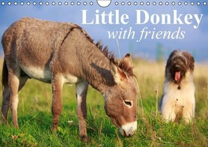 Little Donkey with Friends (Wall Calendar 2015 DIN A4 Landscape)