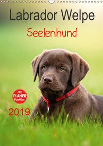 Labrador Welpe - Seelenhund (Wandkalender 2019 DIN A3 hoch)