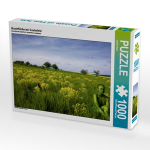 Brachfläche bei Gasterfeld 1000 Teile Puzzle quer
