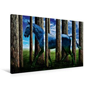 Premium Textil-Leinwand 90 cm x 60 cm quer Das Pferd