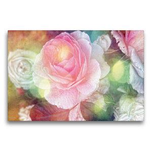 Premium Textil-Leinwand 75 cm x 50 cm quer Vintage Rose