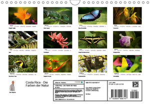 Costa Rica - Die Farben der Natur (Wandkalender 2019 DIN A4 quer