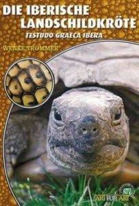 Die Iberische Landschildkröte