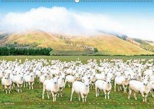 Natur pur: Neuseeland