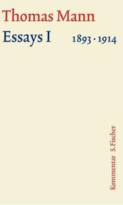 Essays 01. Große kommentierte Frankfurter Ausgabe. Kommentarband