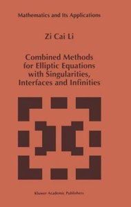 Combined Methods for Elliptic Equations with Singularities, Inte