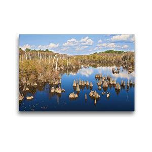 Premium Textil-Leinwand 45 cm x 30 cm quer Dead Lakes