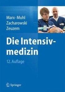 Die Intensivmedizin