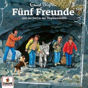 133/Fünf Freunde und der Esel in der Tropfsteinhöh