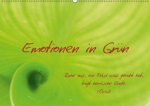 Emotionen in Grün (Wandkalender 2019 DIN A2 quer)